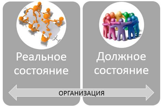 Диагностика организации-2