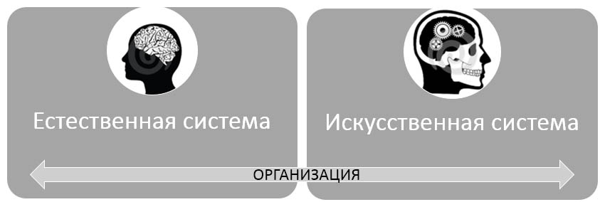 Диагностика организации конструктивисты и объективисты