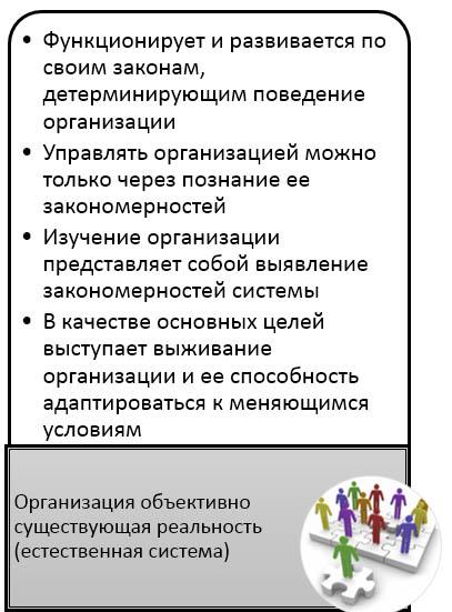 Диагностика организации- естественная система