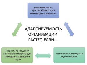 параметры адаптируемости (адаптивности) организации