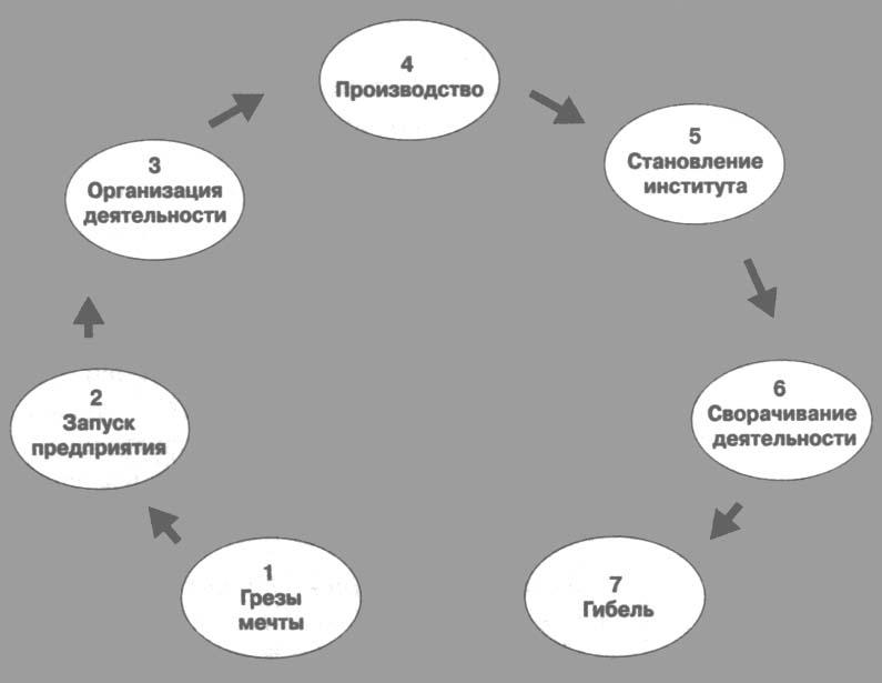 Жизненный цикл организации 7 этапов У.Бриджеса