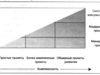 Компетенции для управление сложными проектами
