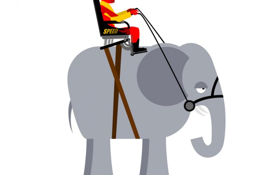 Как изменить организацию, управляя слоном (Хит)